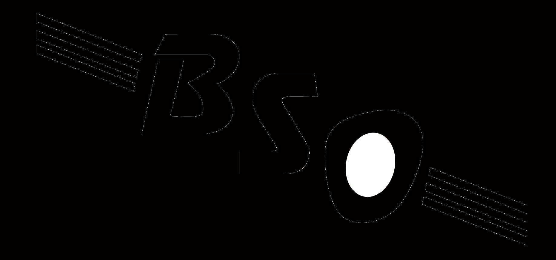 BSO HP schwarz Schriftzug